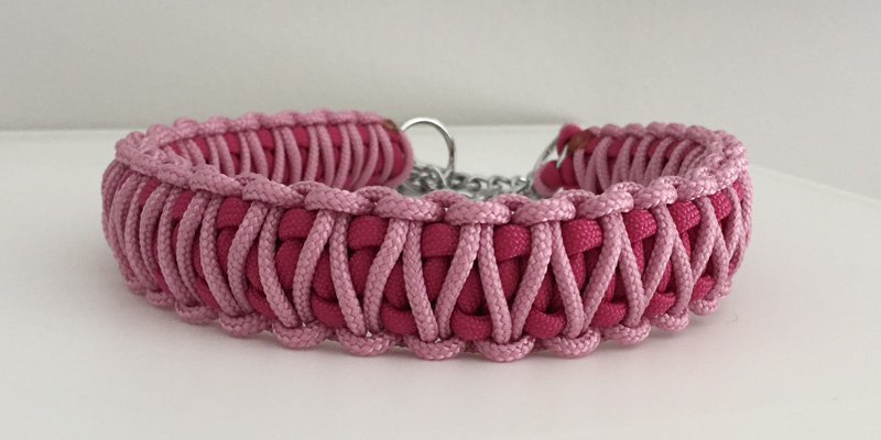 1_Fuchsia_pink